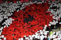 Fanoušci Walesu při utkání se Srbskem.