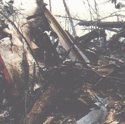 Trosky letadla Boeing 747SR společnosti Japan Airlines. Letoun spadl ve skalnatém terénu, zemřelo 520 lidí.