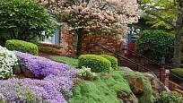 Svah jako květinový koberec