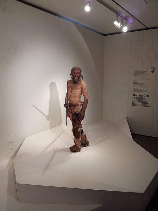 Rekonstruovaný Ötzi z dílny Kennis Brothers, jak je vystaven v Ötziho muzeu v Bolzanu