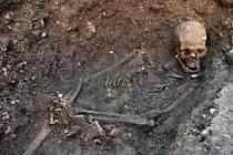 Kostra Richarda III., kterou našli archeologové pod parkovištěm v Leicesteru.