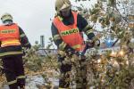 Videosouhrn Deníku – pondělí 30. října 2017