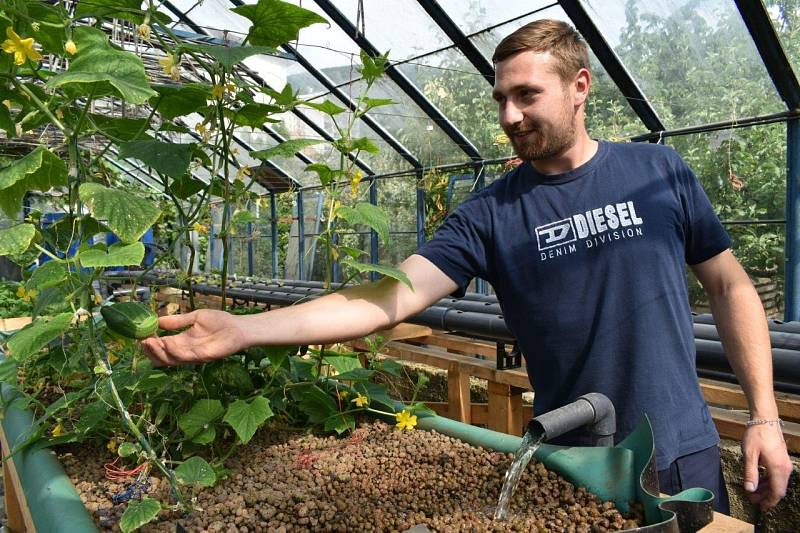 Pavel Lukáč se pustil do aquaponie, která spojuje chov ryb s pěstováním zeleniny.