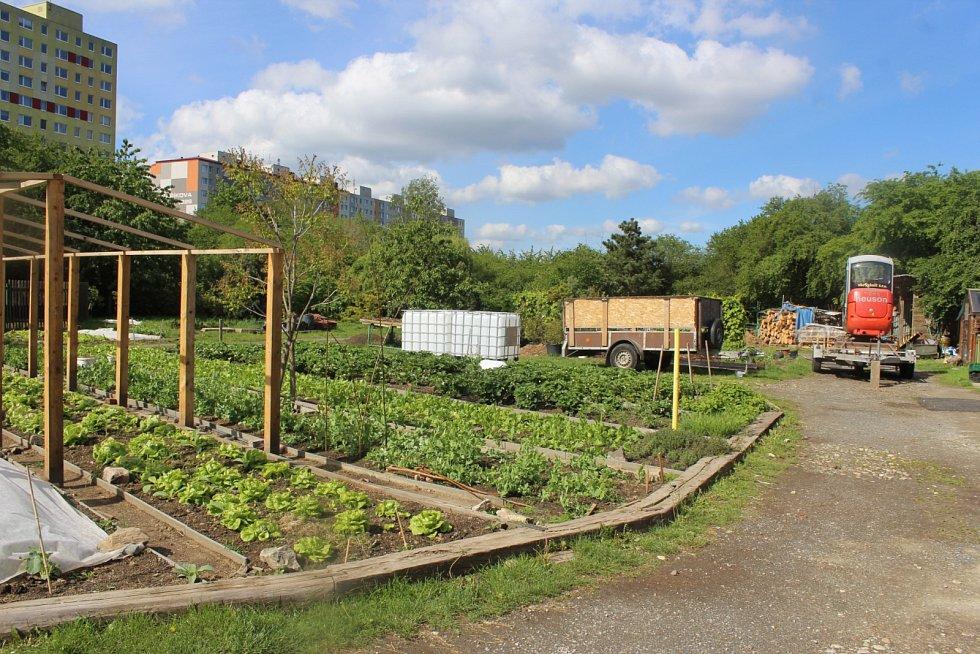 Osoby se zdravotním postižením udržují budovy a pozemky, pracují ve Zdravé jídelně, v rukodělné dílně a v zahradnictví