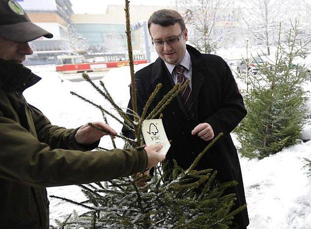 Ministr životního prostředí Pavel Drobil si vybírá vánoční stromeček z Krkonoš s certifikátem ekologického hospodaření, jejichž prodej byl zahájen 7. prosince před budovou ministerstva životního prostředí v Praze.
