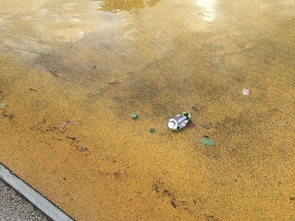 Odpadky na plážích