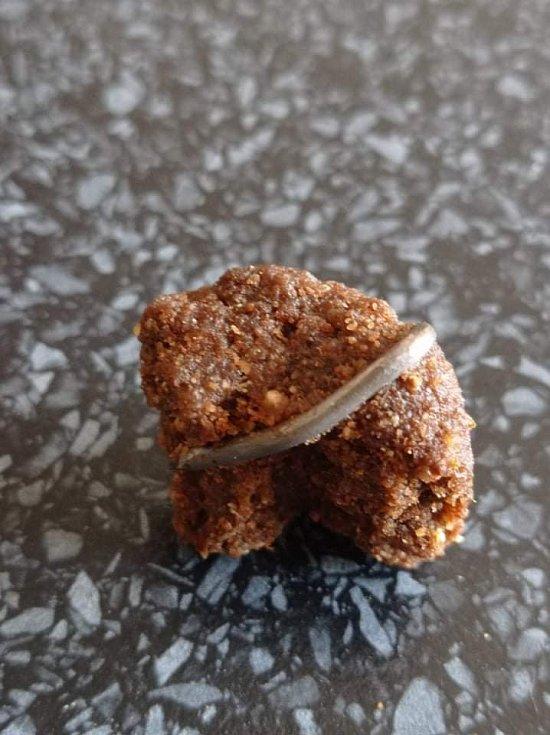Hřebík zalisovaný v granuli