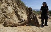 V Makedonii objevili fosílie předka mamuta