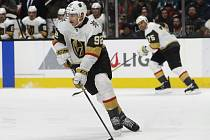 Hokejista Vegas Golden Knights Tomáš Nosek.