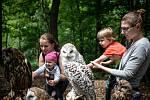 Nestihli jste letos o prázdninách navštívit žádnou zoo? Tak to napravte.
