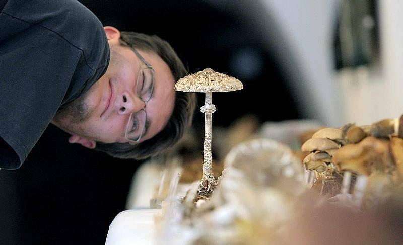 Mykologický spolek a Muzeum Vysočiny Havlíčkův Brod uspořádali od 6. do 8. září 2011 výstavu hub.
