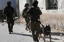 Izraelští vojáci hledají unesené studenty.