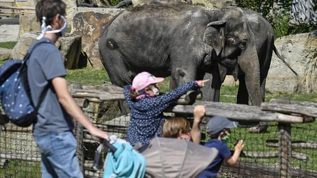 Návštěvníci pražské zoo