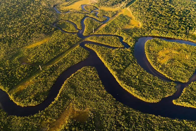 Amazonský prales je považovaný za plíce Země.