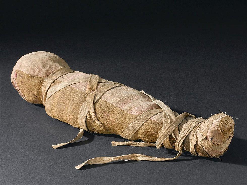 Mumie egyptského muže, uložená v londýnském Eustonu, u níž vědci prozatím nedokázali určit stáří. Údajně pochází z rozmezí let 2000 až 101 před naším letopočtem.