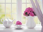 Růžová v interiéru