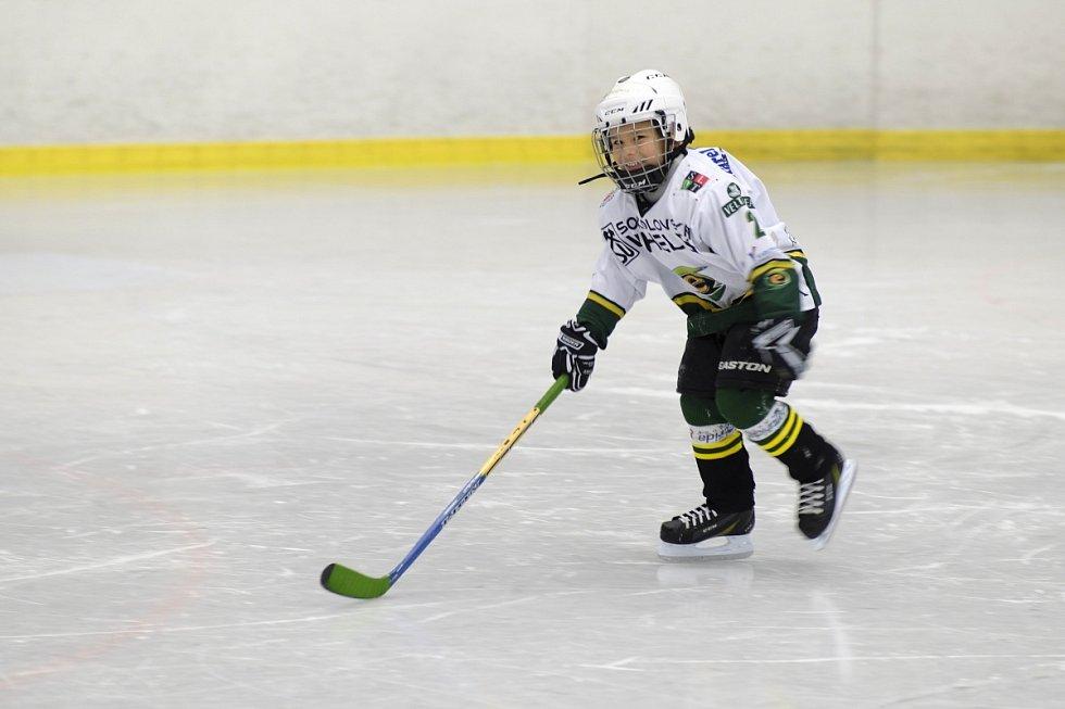 Malý adept hokeje.