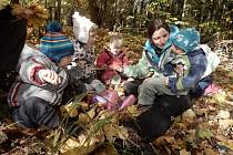 Lesní školky v Česku přibývají. Dětem přinášejí nezapomenutelné zážitky.