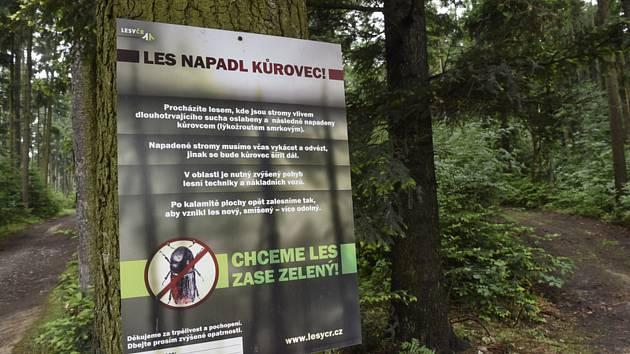 Na snímku pořízeném 18. května 2018 při terénní tiskové konferenci Lesů ČR v lesích nedaleko Olomouce je tabule upozorňující na výskyt kůrovce