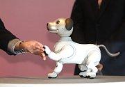Nový japonský robot - pes Aibo