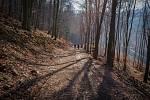 Slovenské pohoří Tribeč je plné tajemných lesů.