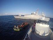 Může za smrt delfínů turecké námořní vojenské cvičení? Odborníci se v názoru rozcházejí
