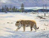Obraz Zdeňka Buriana Tygr ussurijský byl vydražen 24. září v Praze za 3,1 milionu korun. Je to autorský rekord. Celkem byla v aukci prodána díla za 31 mil. Kč.