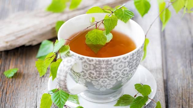 Listy břízy se suší a poté užívají jako nálev nebo se drtí na prášek. Vhodná je i matečná tinktura, tedy roztok, který se připravuje macerováním listů v alkoholu.