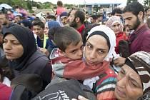 Do Rakouska dorazily ze Slovinska dvě skupiny uprchlíků 4bb0250464