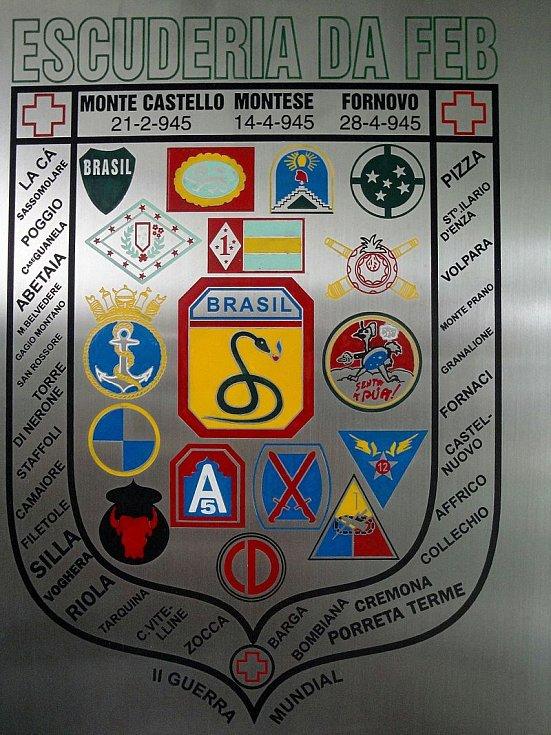 Brazilská bojová zástava se symbolem útočícího hada