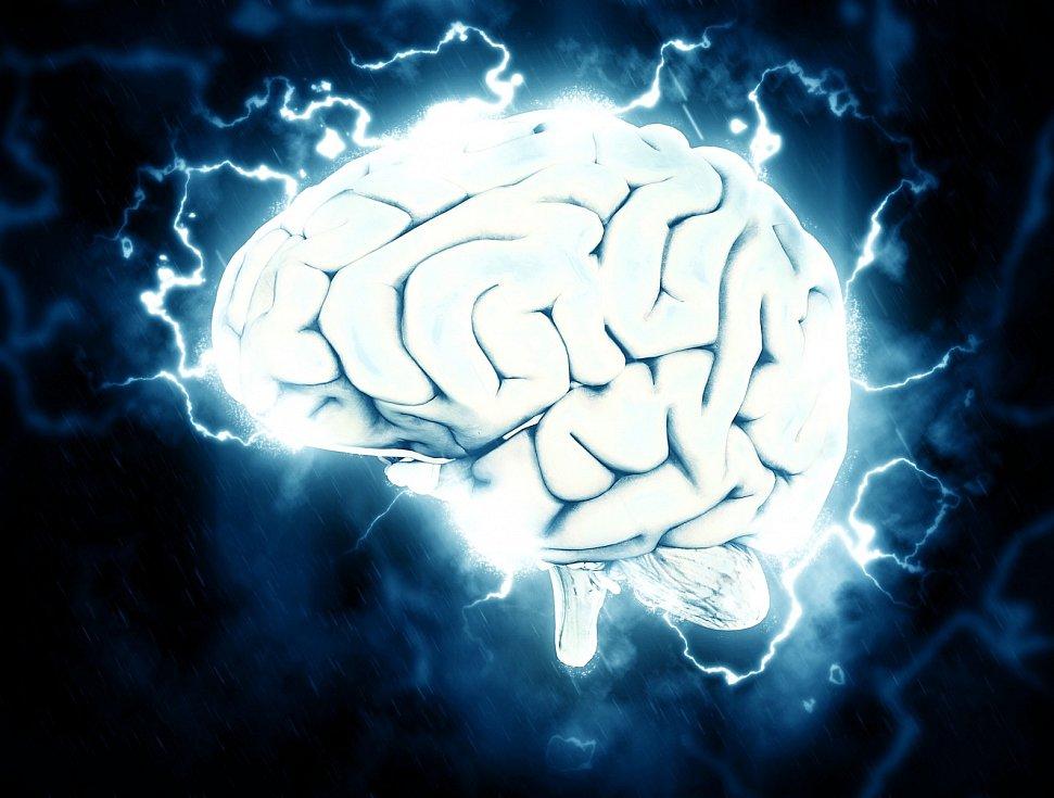 Aby dorostl té správné velikosti, vyvíjí se lidský mozek v porovnání s příbuznými velmi dlouho.