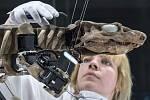 Robot vytvořený podle fosílie prehistorického tvora Orobates pabsti