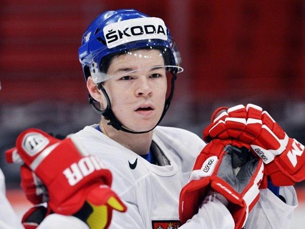 Hokejista Tomáš Hertl.
