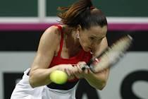 Jelena Jankovičová ze Srbska ve finále Fed Cupu proti České republice.