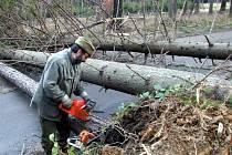 Lesníci likvidují spadané stromy. Silný vítr má republiku zasáhnout také tento víkend.