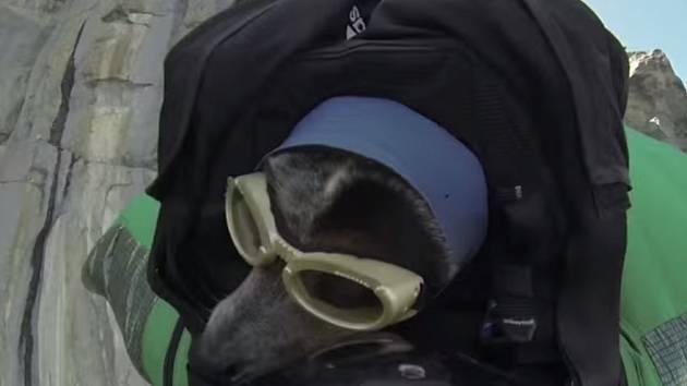 Horolezec skočil ze skály i se svým psem.