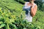 Z čajové plantáže na Srí Lance.