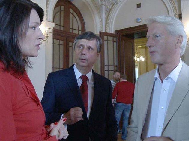 V dokumentárním filmu Hledá se prezident chtějí filmoví tvůrci zachytit první přímou volbu prezidenta v České republice.