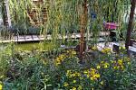 Expozice Dešťová zahrada získala ocenění Nejkrásnější zahrada na výstavě Zahrada Čech v roce 2016.