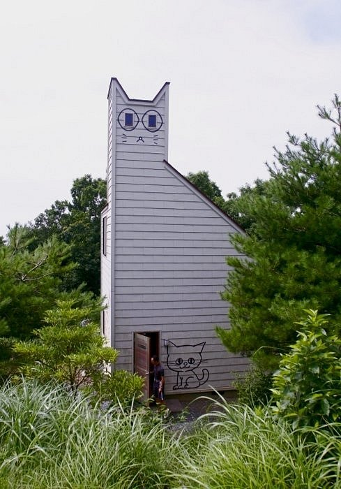 Mají zde svá sídla, ale jinak žijí kočky na ostrově taširodžima voně