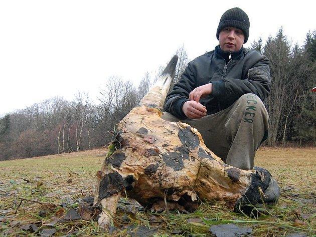 Syn farmáře nalezl na pastvině hlavu krávy staženou z kůže.