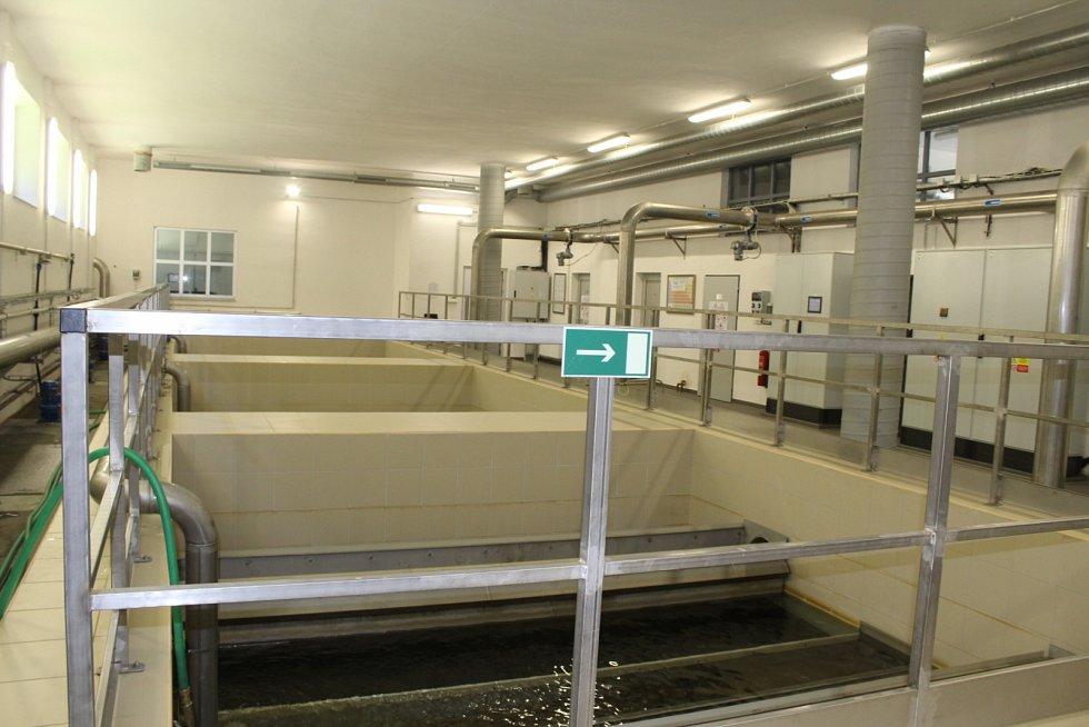 Úpravna vody v Herlíkovicích