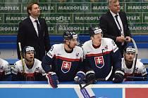 Vladimír Vůjtek (vpravo vzadu) na střídačce Slovenska při zápase s Finskem
