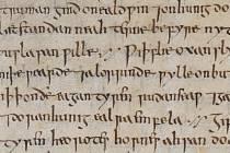 Staroanglický lékařský spis Bald's Leechbook
