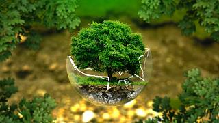 Uhlík se datuje, jak stará je Země