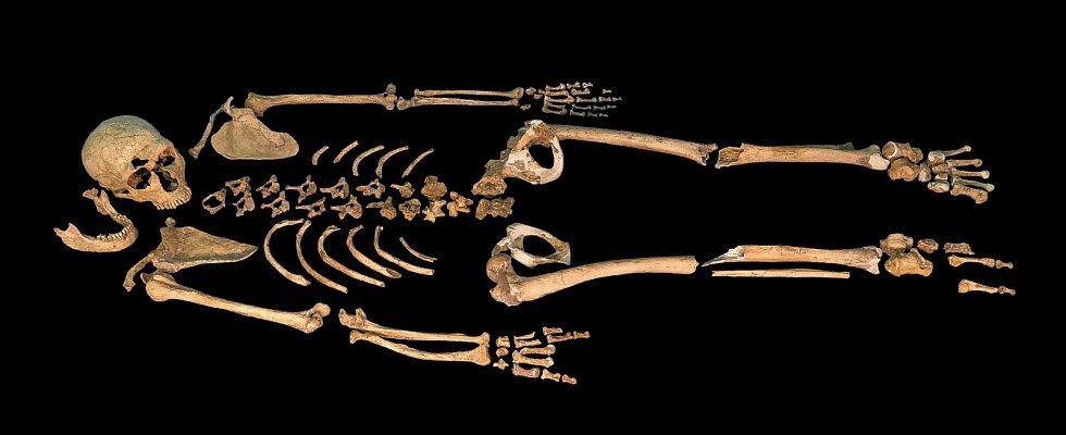 Kostra neandertálce označovaného jako La Ferrassie 1