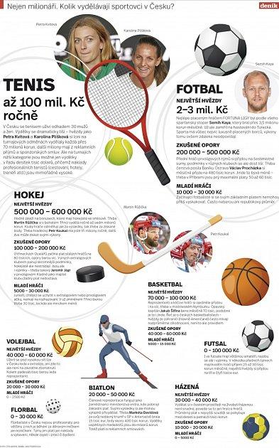 Kolik vydělávají sportovci vČesku?