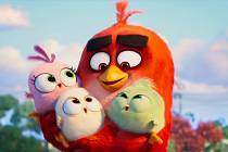 Rozlobení ptáci znovu táhnou do kin