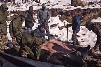 Laviny a sněhové bouře na severu Nepálu usmrtily ve středu nejméně 21 turistů.