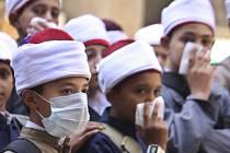 Během uplynulého půl roku onemocnělo v Egyptě agresivní formou ptačí chřipky typu H5N1 už 165 lidí. Čtyřicet osm z nich nemoci podlehlo.
